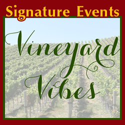 Vineyard Vibes featured LAS on 10/18/20